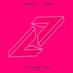 A Different Way (Featuring Lauv) (Kayzo Remix) (Cd Single) Dj Snake