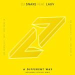 A Different Way (Featuring Lauv) (Bro Safari & Etc!etc! Remix) (Cd Single) Dj Snake
