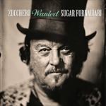 Wanted Zucchero
