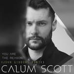 You Are The Reason (John Gibbons Remix) (Cd Single) Calum Scott