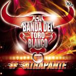 Atrapante La Banda Del Toro Blanco