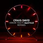 I Know You (Featuring Bastille) (Remixes) (Ep) Craig David