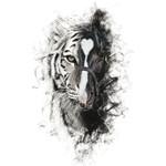 Para Sacarte De Mi Vida (Featuring Los Tigres Del Norte) (Cd Single) Alejandro Fernandez
