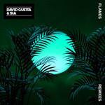 Flames (Featuring Sia) (Remixes) (Ep) David Guetta