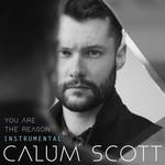 You Are The Reason (Instrumental) (Cd Single) Calum Scott