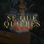 Se Que Quieres (Featuring Brytiago, Jon Z & Almighty) (Remix) (Cd Single) De La Ghetto
