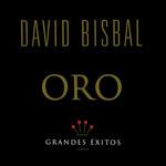 Oro: Grandes Exitos David Bisbal