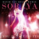 You Didn't Do It (David Van Bylen Day Remix) (Cd Single) Soraya Arnelas