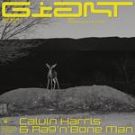 Giant (Featuring Rag'n'bone Man) (Cd Single) Calvin Harris