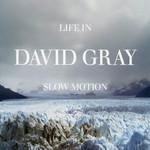 Life In Slow Motion David Gray