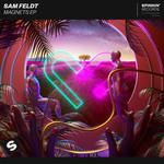 Magnets (Ep) Sam Feldt