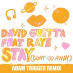Stay (Don't Go Away) (Featuring Raye) (Adam Trigger Remix) (Cd Single) David Guetta
