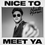Nice To Meet Ya (Cd Single) Niall Horan