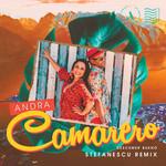 Camarero (Featuring Descemer Bueno) (Stefanescu Remix) (Cd Single) Andra