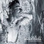 El Vaiven De Las Olas: Lo Mejor De 2000-2019 Javier Ojeda
