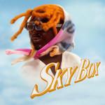 Skybox (Cd Single) Gunna