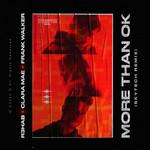 More Than Ok (Featuring Clara Mae & Frank Walker) (Skytech Remix) (Cd Single) R3hab