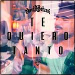 Te Quiero Tanto (Cd Single) David Bolzoni