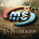 En Preparacion Banda Sinaloense Ms De Sergio Lizarraga