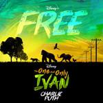Free (Cd Single) Charlie Puth