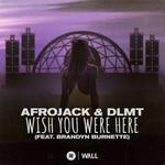 Wish You Were Here (Featuring Dlmt & Brandyn Burnette) (Cd Single) Afrojack