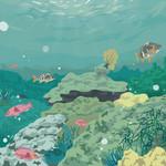 Arrecife Ensecreto