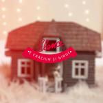 E Craciun Si Ninge (Cd Single) Elena Gheorghe
