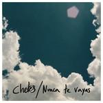 Nunca Te Vayas (Cd Single) Chetes