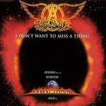I Don't Want To Miss A Thing (Cd Single) Aerosmith