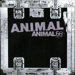 Animal 6 Animal
