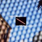 White Ladder David Gray