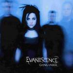 Going Under (Cd Single) Evanescence