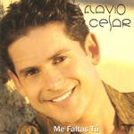 Me Faltas Tu Flavio Cesar