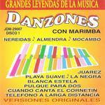 Danzones Con Marimba Volumen 1 Marimba Orquesta La Diosa Del Sur