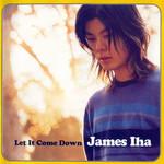 Let It Come Down James Iha