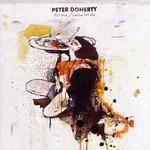 Grace Wastelands Peter Doherty