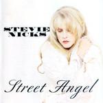 Street Angel Stevie Nicks
