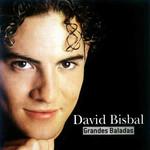 Grandes Baladas David Bisbal