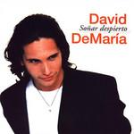Soñar Despierto David Demaria