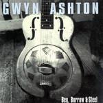 Beg, Borrow & Steel Gwyn Ashton