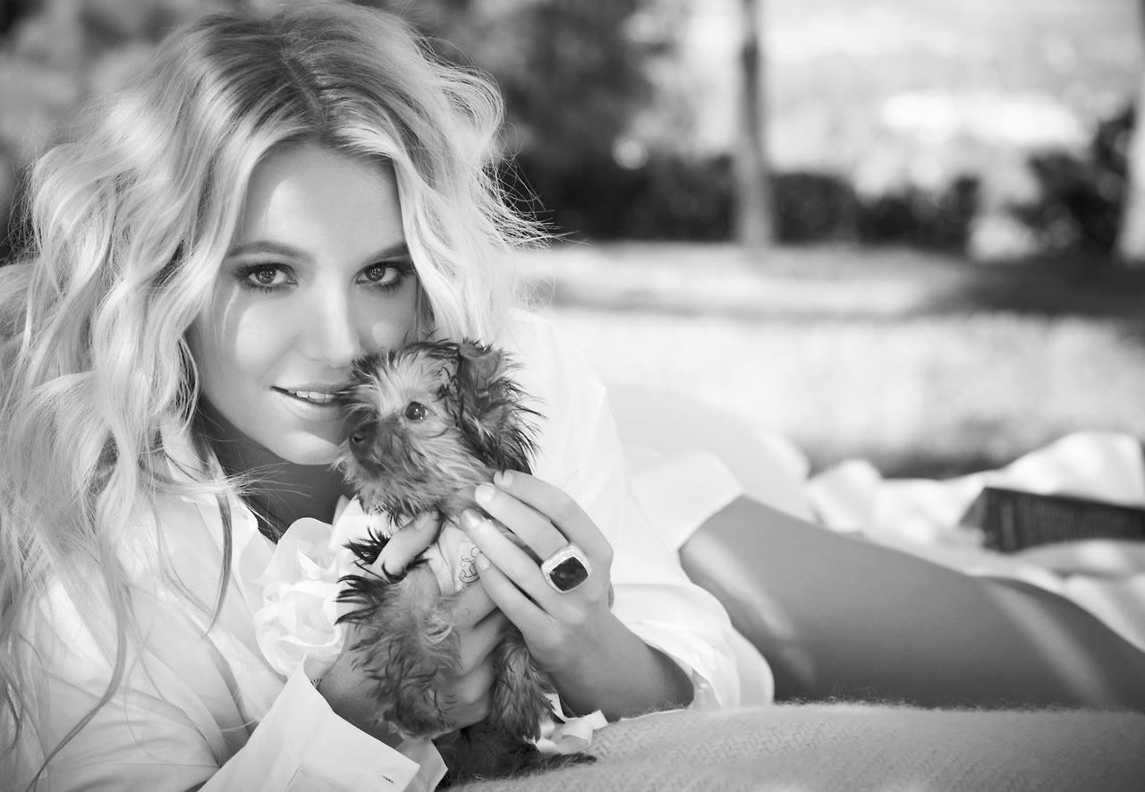 Foto de Britney Spears  número 50721