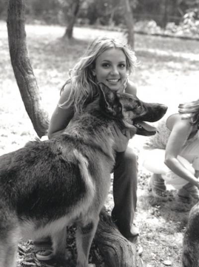 Foto de Britney Spears  número 67772