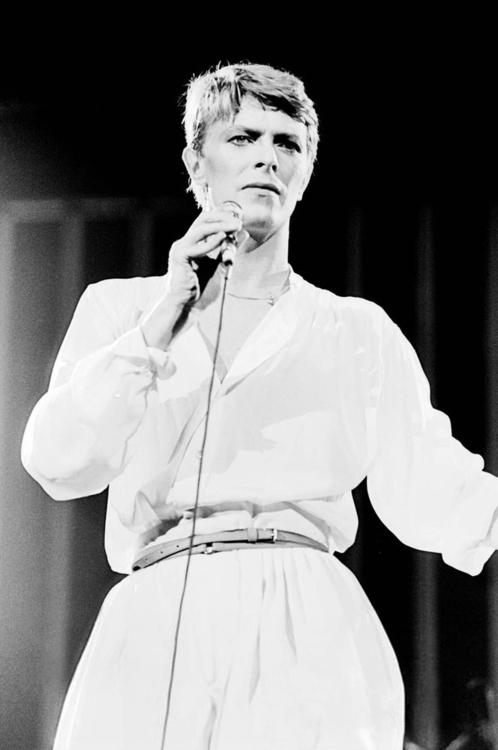 Foto de David Bowie  número 49453
