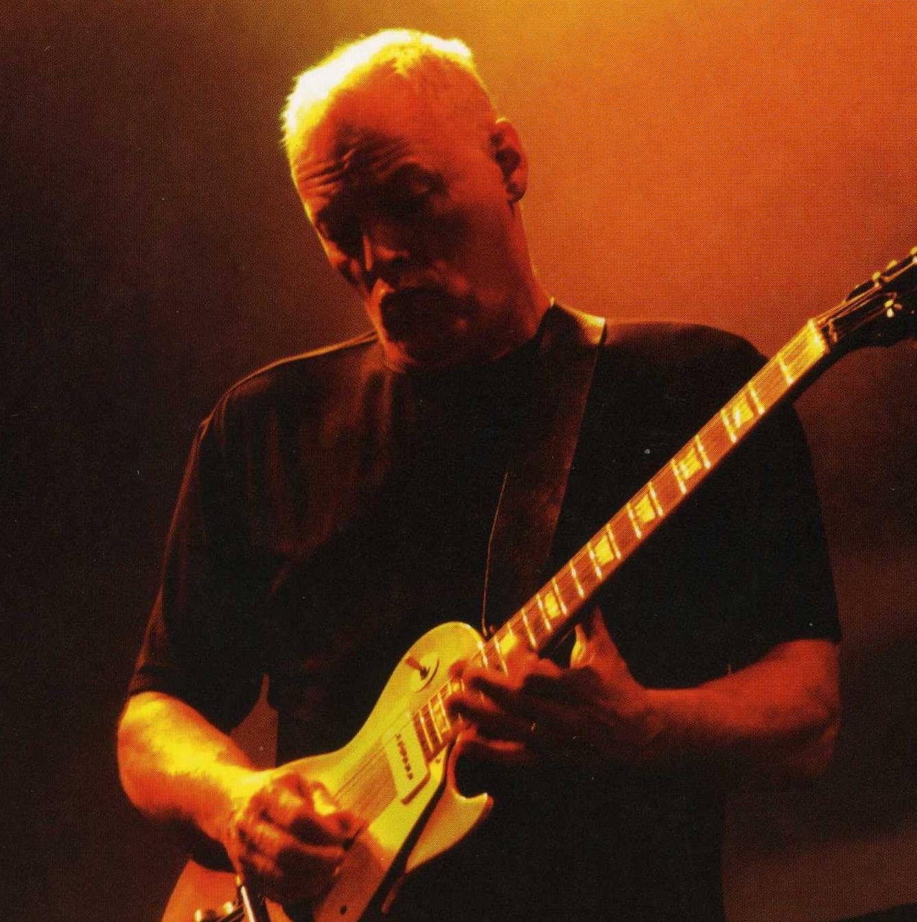 Foto de David Gilmour  número 9359