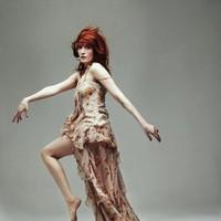 Biografía de Florence + The Machine