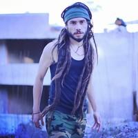 Foto de Lion Reggae 84519