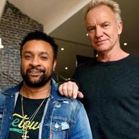 Foto de Sting & Shaggy 88226