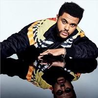Foto de The Weeknd 82594