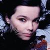 Björk desvela su disco