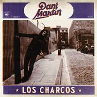 Dani Martin estrena el video de 'Los charcos'